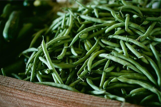 Beans Foods to Avoid if You Are Trying to Get Pregnant