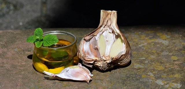 Benefits of Garlic in Human Body