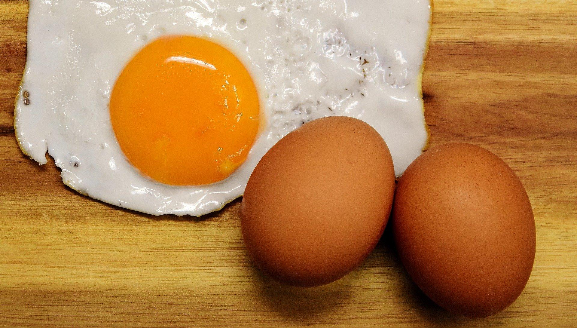 Muscle Building Foods. egg. eggs. egg yolk. www.blisslife.in