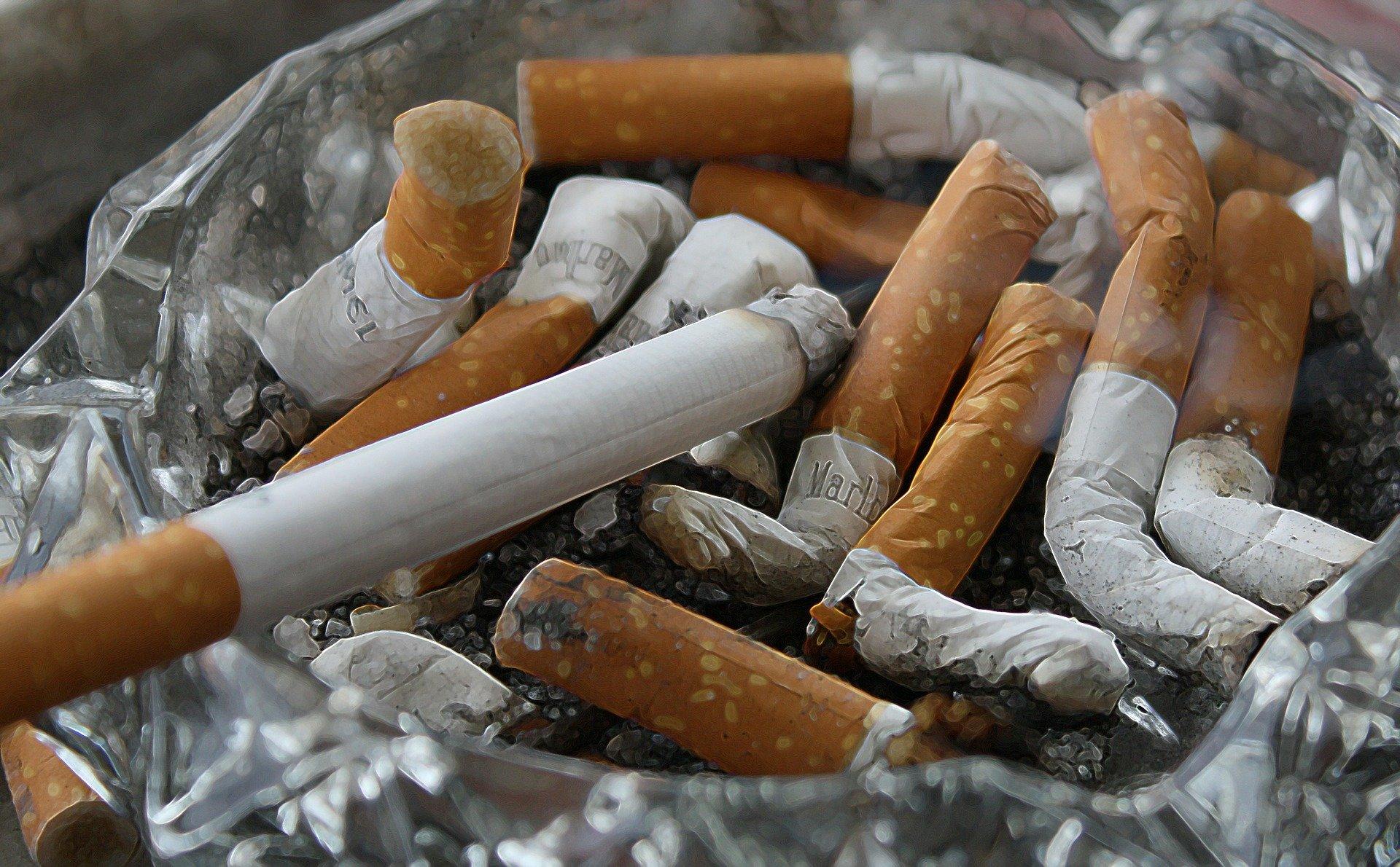 Lower Myostatin Levels. cigarette. smoke. smoking. ashtray. www.blisslife.in