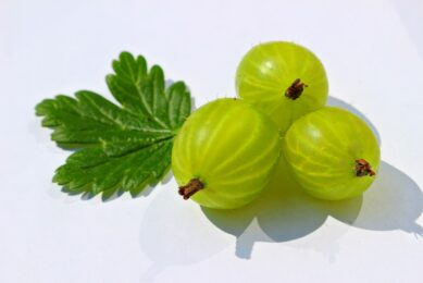 Benefits of Indian Gooseberry