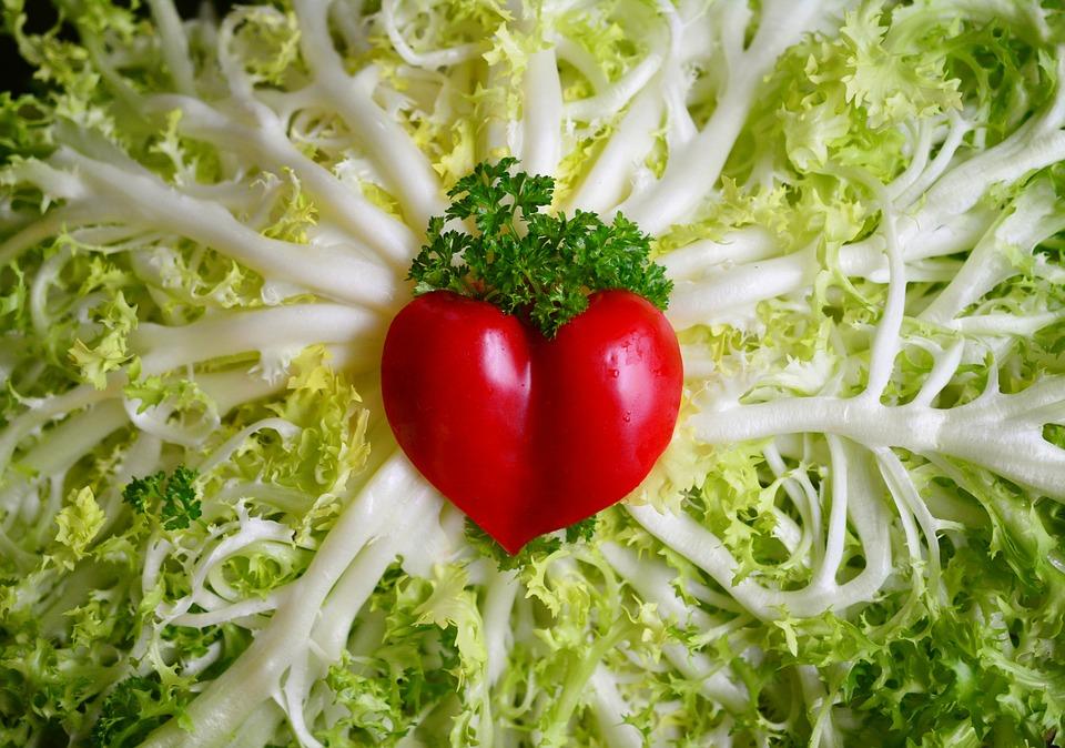 Health Benefits. probiotic. yeast. health. supplement. fungus protozoa. bacteria.