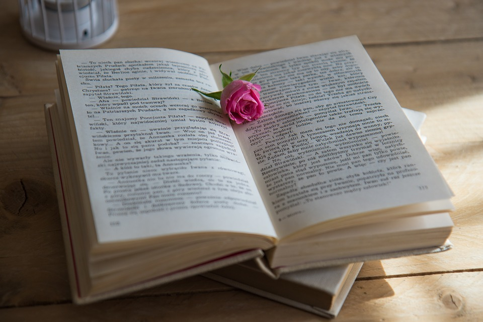 books, motivational, new year, books and rose. motivational books. www.blisslife.in